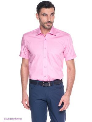 Рубашка MONDIGO. Цвет: розовый