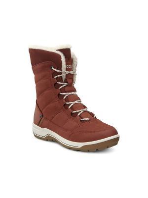 Ботинки ECCO. Цвет: рыжий