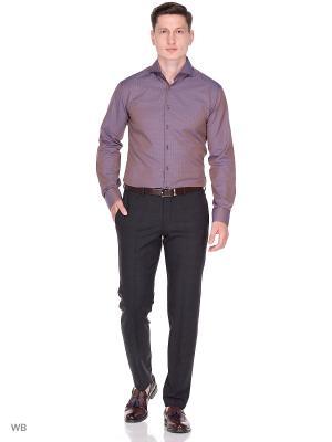 Рубашка BAZIONI. Цвет: коричневый