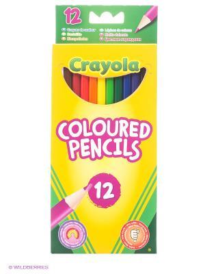 Набор цветных карандашей Crayola. Цвет: желтый