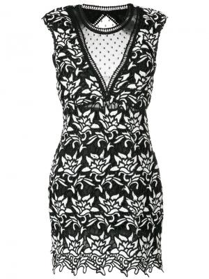 Платье Savanna Jovonna. Цвет: чёрный
