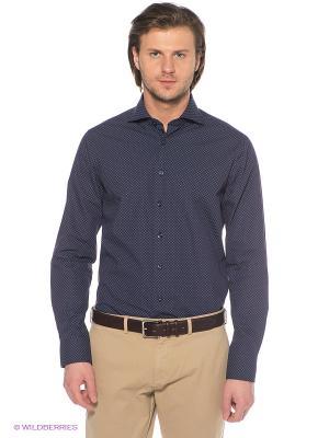 Рубашка ARROW. Цвет: фиолетовый, синий
