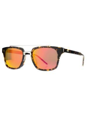Солнцезащитные очки Dakota Smith. Цвет: коричневый
