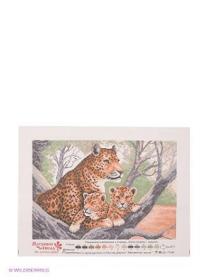 Рисунок на канве Гепард с малышами Матренин Посад. Цвет: коричневый, белый