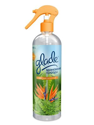 Glade Освежитель воздуха Вдохновение природы Цветущий папоротник 405мл. Цвет: красный