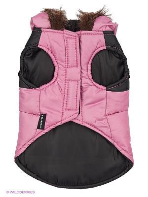Куртка Doggy Dolly. Цвет: розовый