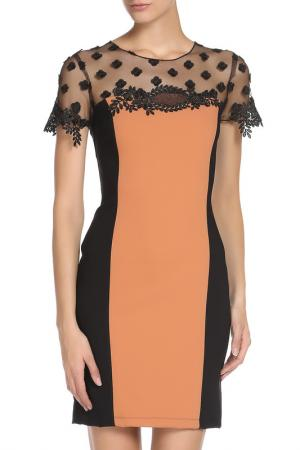 Прилегающее платье с кружевом Cristina Effe. Цвет: 1306-6a 5, ruggine