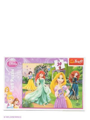 Пазл Очаровательные принцессы Trefl. Цвет: розовый