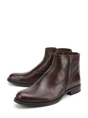 Ботинки Stingray. Цвет: коричневый