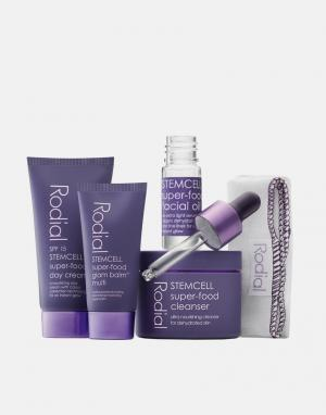 Rodial Косметический набор Stemcell Superfood Discovery Kit. Цвет: бесцветный