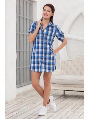 Рубашка CLEO. Цвет: синий, белый