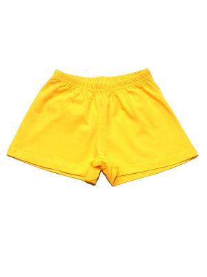 Шорты BYT. Цвет: желтый