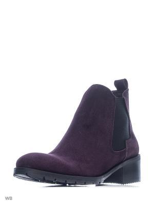 Ботинки GARRO. Цвет: фиолетовый