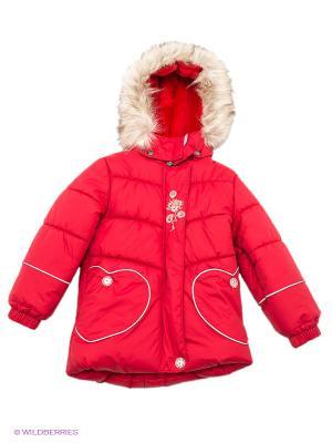 Куртка Kerry. Цвет: красный, серый