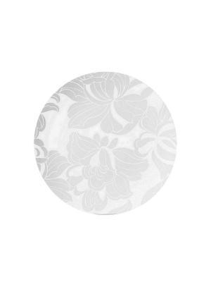 Набор тарелок обеденных БЛАНК 28 см 6 шт Biona. Цвет: серый