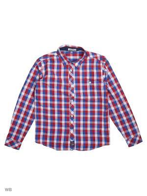 Рубашка S`Cool. Цвет: синий, красный, белый