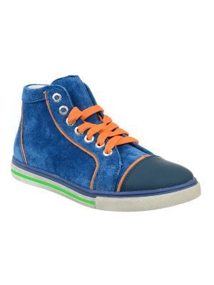 Кеды Тотто. Цвет: синий, оранжевый