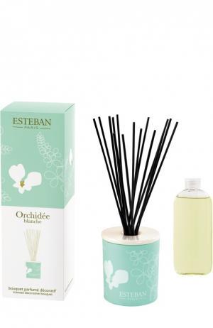 Деко букет с ароматом Белая орхидея Esteban. Цвет: бесцветный
