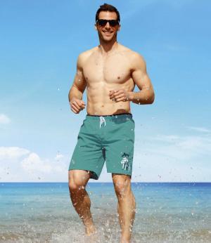 Пляжные Шорты AFM. Цвет: зеленыи