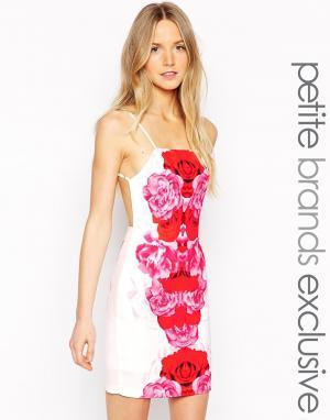 Tiger Mist Petite Платье мини с бретельками на спине Red Bloom. Цвет: белый