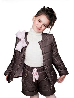 Куртка и шорты babyAngel. Цвет: коричневый