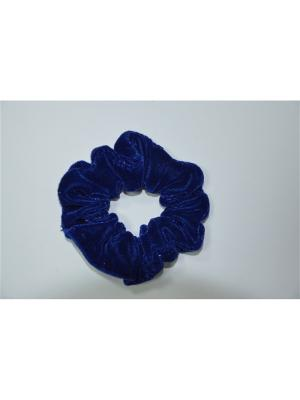 Резинка для волос Bizon. Цвет: синий