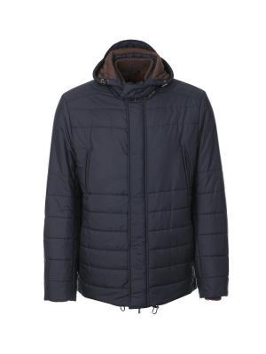 Куртка Malo. Цвет: темно-синий