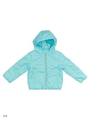 Куртка демисезонная Button Blue. Цвет: бирюзовый