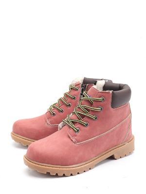 Ботинки ESCAN. Цвет: розовый