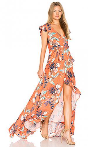 Платье galla RAVN. Цвет: оранжевый