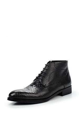 Ботинки классические Guido Grozzi. Цвет: черный