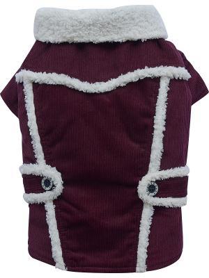 Куртка Doggy Dolly. Цвет: фиолетовый