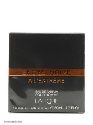 Парфюмерная вода Encre Noire a L Extreme EDP 50 ML SPRAY LALIQUE. Цвет: прозрачный