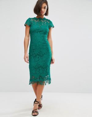 Paper Dolls Кружевное платье с коротким рукавом. Цвет: зеленый