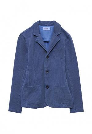 Пиджак Blukids. Цвет: синий
