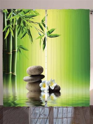 Фотошторы Бамбук и массажные камни, 290*265 см Magic Lady. Цвет: бежевый, белый, черный, зеленый, темно-зеленый