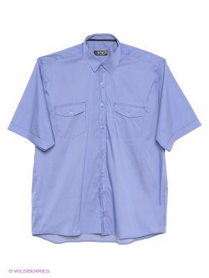 Рубашка OLSER. Цвет: голубой