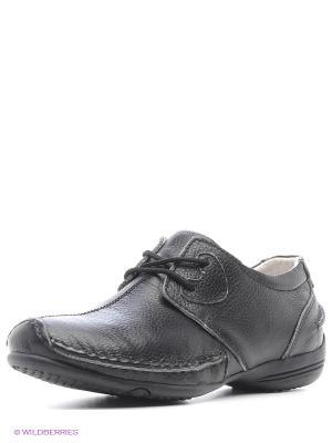 Ботинки DODGIO. Цвет: черный