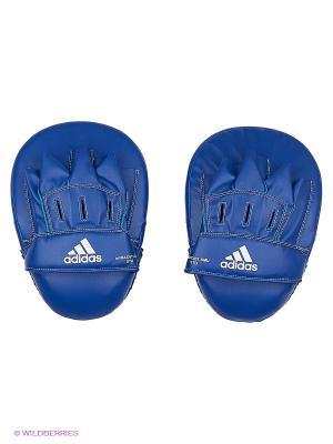 Лапы Focus Mitt Short Eco Adidas. Цвет: синий, красный
