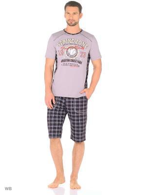 Костюм мужской (футболка, шорты) MARSOFINA. Цвет: коричневый