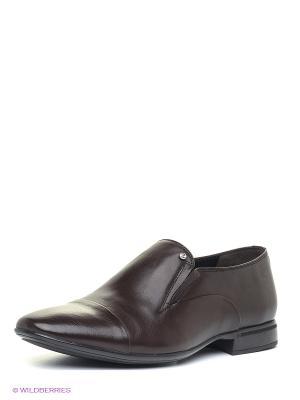 Туфли Alba. Цвет: коричневый