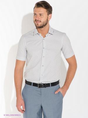 Рубашка ABSOLUTEX. Цвет: белый, серый