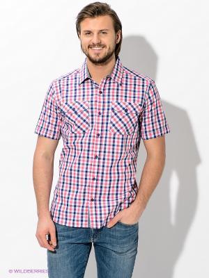 Рубашка Maestro. Цвет: белый, синий, розовый