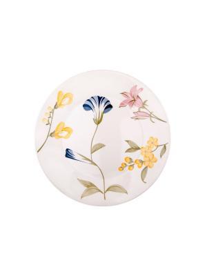 Набор тарелок обеденных МАЙ 26 см 6 шт Biona. Цвет: белый