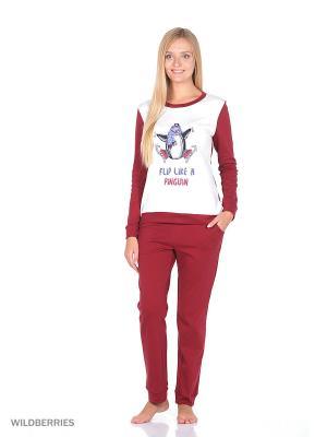 Домашний костюм SALHAM. Цвет: бордовый, белый