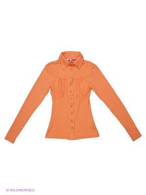 Блуза MONDIGO. Цвет: оранжевый