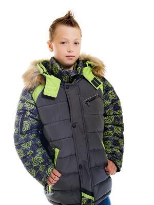 Куртка для мальчика Вихрь Пралеска. Цвет: салатовый