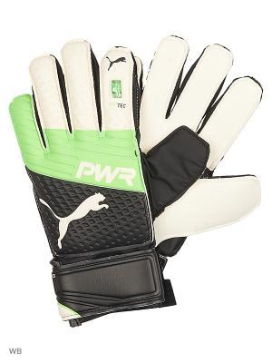 Вратарские перчатки evoPOWER Protect 3.3 Puma. Цвет: салатовый