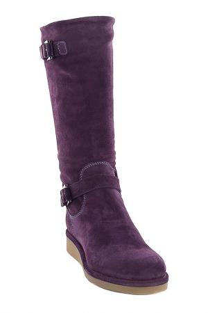 Дубленные сапоги Emporio Armani. Цвет: фиолетовый