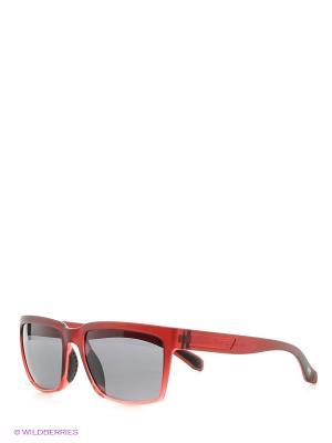 Солнцезащитные очки MS 04-019 22P Mario Rossi. Цвет: красный